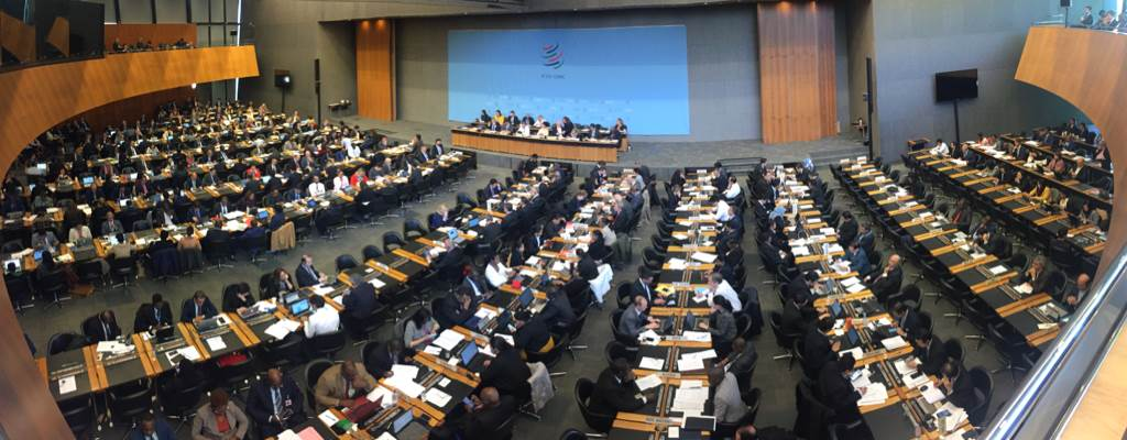 WTO General Council - Photo:Christian Groseth