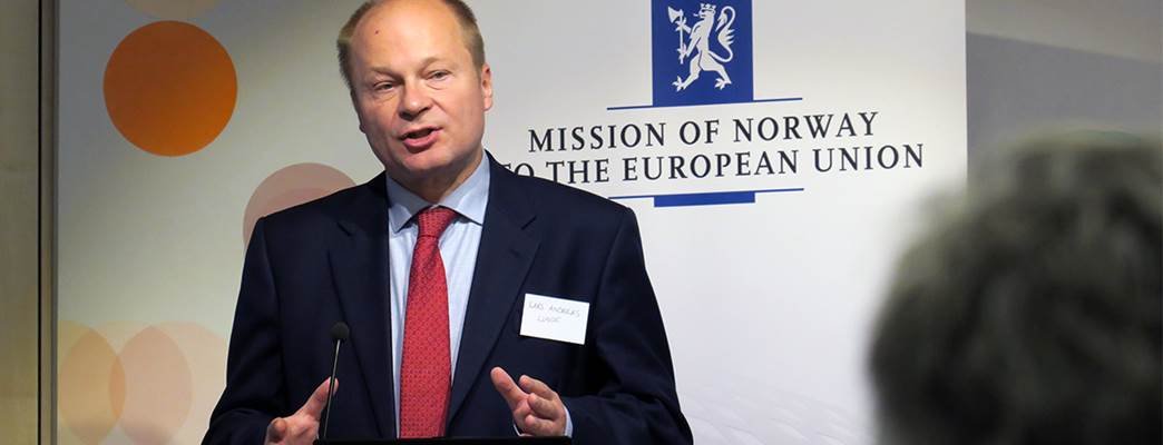 State Secretary - Photo:Simon Johannsson, Norwegian EU delegation