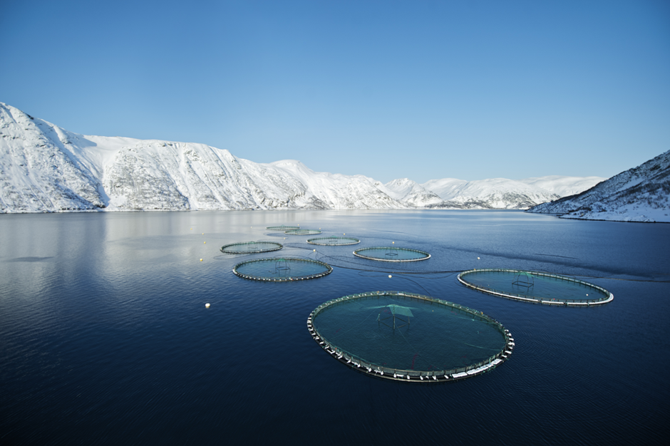 Seafood farm in Norway
