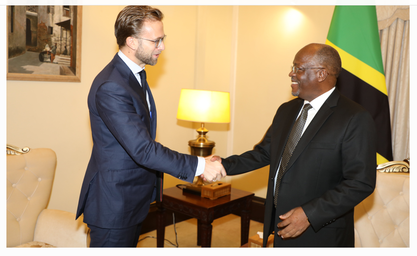 Minister Astrup meets President Magufuli - Photo:State House
