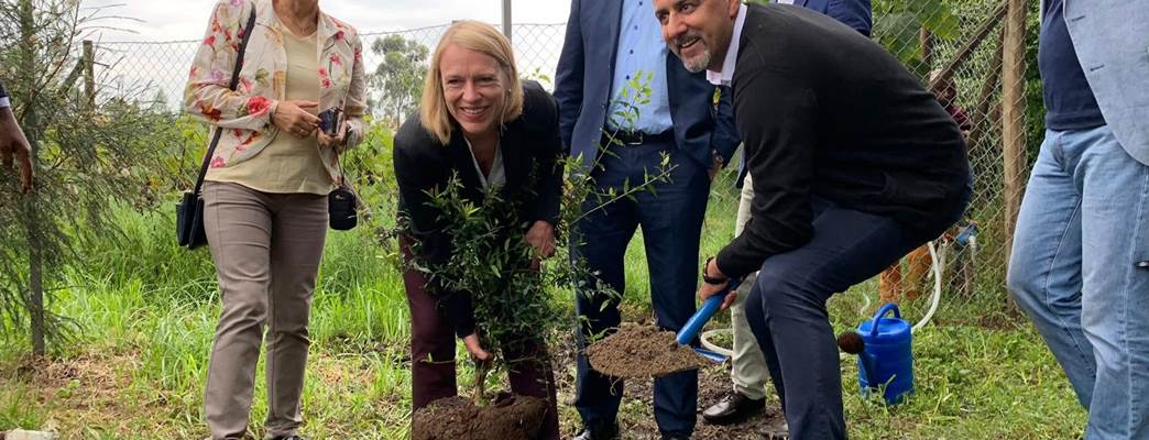 Norwegian parliamentarians plant trees in Addis Ababa to support Ethiopia's Green Legacy Initiative.  - Photo:Marit Svälas